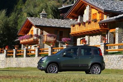 Fiat Panda 4x4 319 Aussenansicht Seite schräg statisch grün