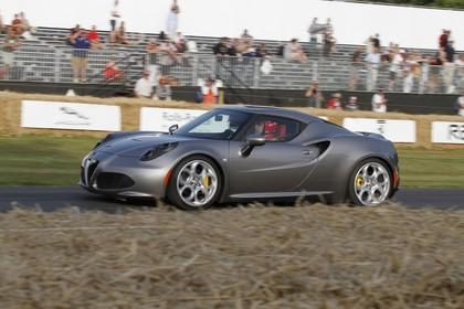 Alfa Romeo 4C Aussenansicht Seite schräg dynamisch grau