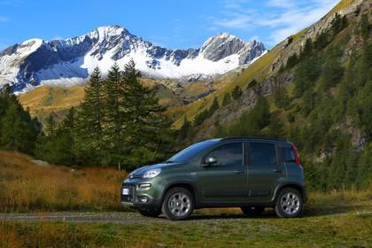 Fiat Panda 4x4 319 Aussenansicht Seite schräg dynamisch grün