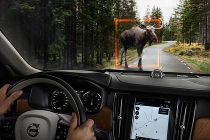 Volvo S90 Innenansicht dynamisch Armaturenbrett und Wildtiererkennungssystem