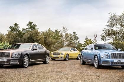 Bentley Mulsanne Aussenansicht Front schräg statisch braun gelb blau